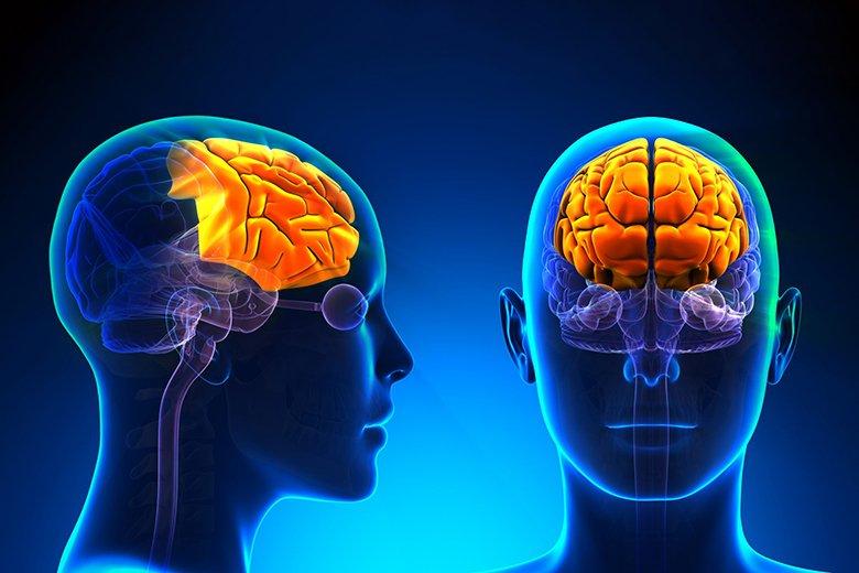 Как научиться думать правильно? Ментальная карта, или Лучшие в мире конспекты