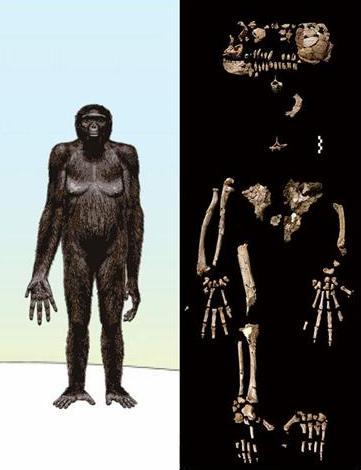 Любовь доисторическая (4)