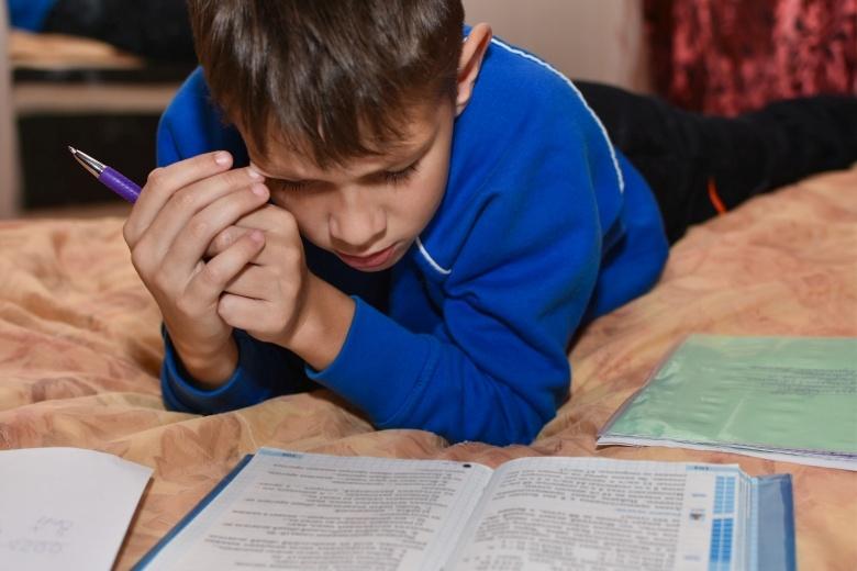 Психологические поводы для перевода на домашнее обучение