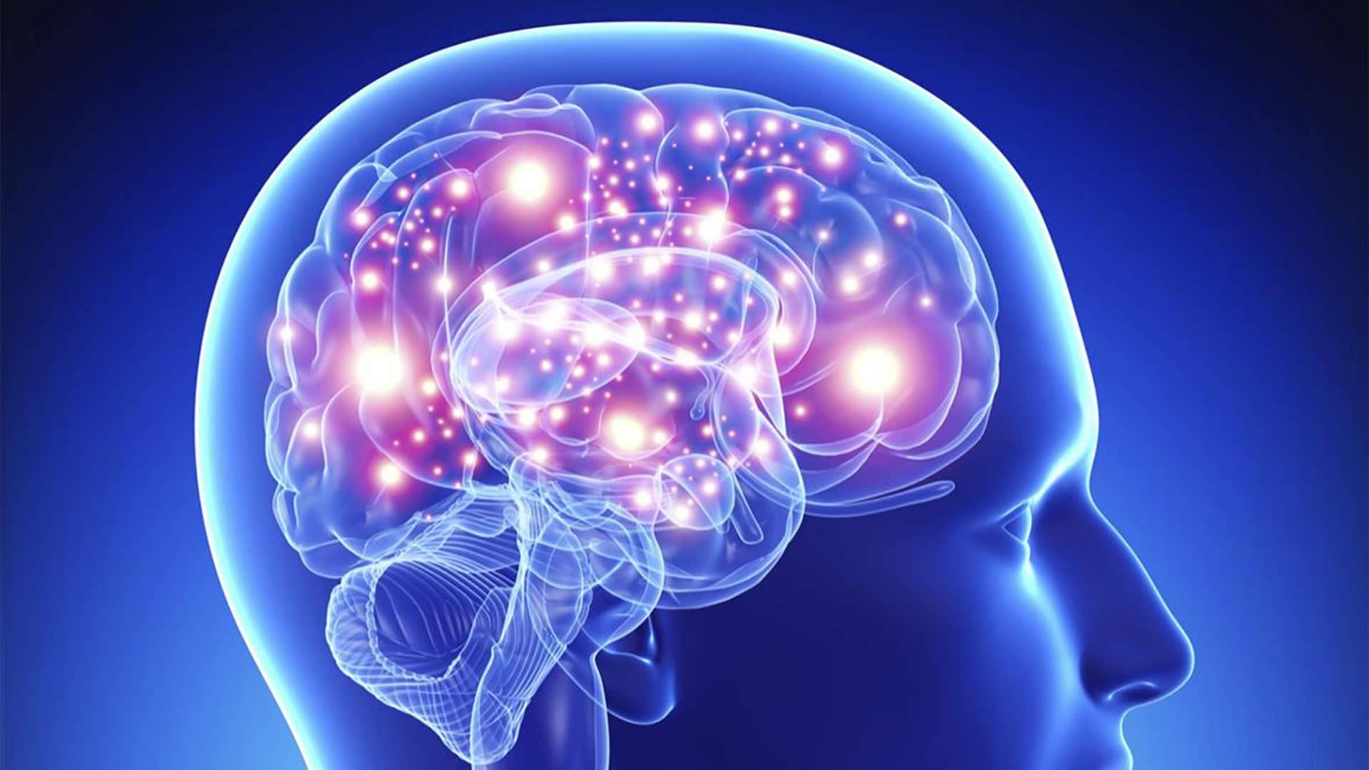 сколько мощности мозга мы используем