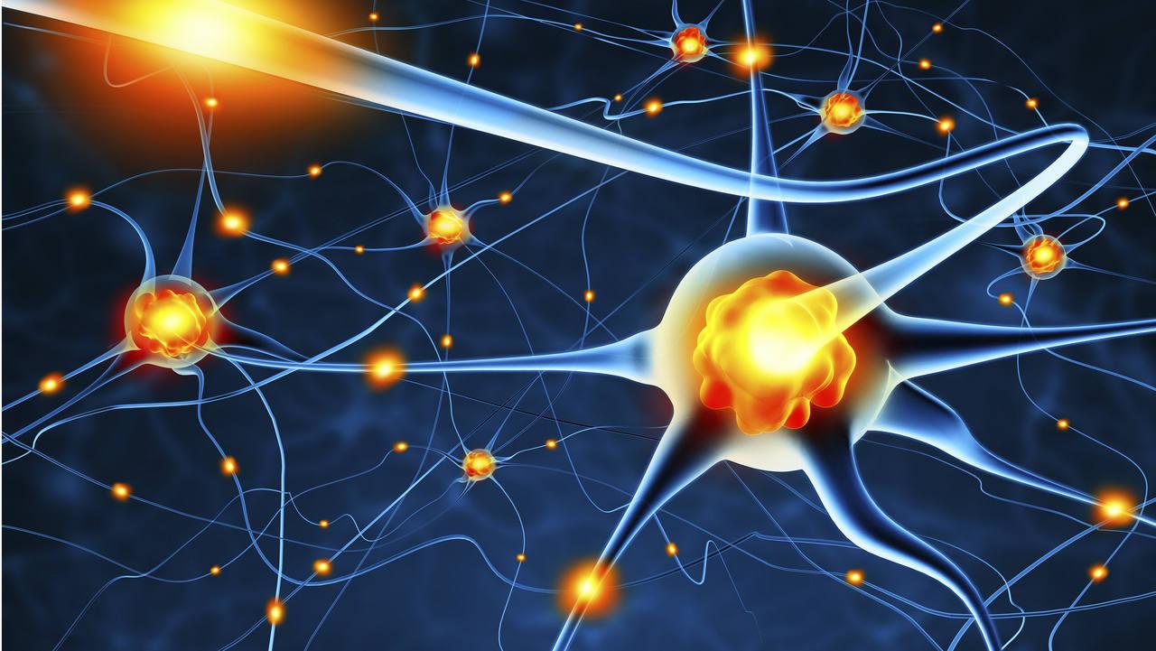 нейротрофический фактор